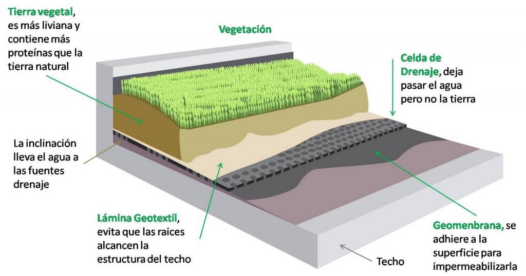 techo-verde-1