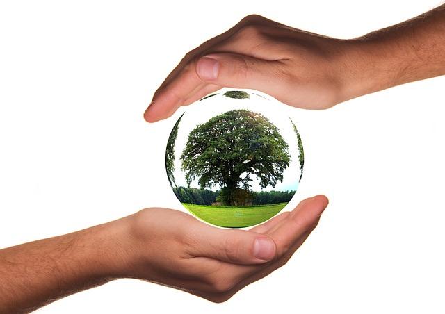 negocios sostenibles