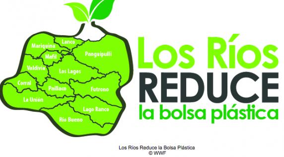 region-los-rios-bolsas-plasticas-imagen-por-wwf-chile-2-580x341